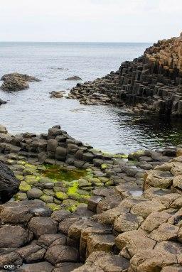 Irlande (Connemara + Galway + Belfast) 167