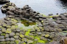 Irlande (Connemara + Galway + Belfast) 169