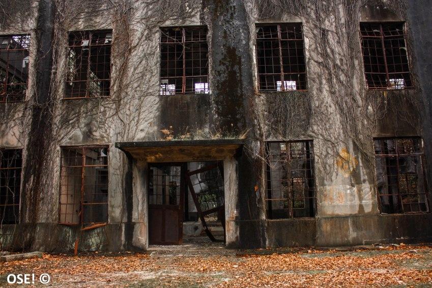 okunoshima était à la base un ile sur laquelle était dissimulée une usine de gaz chimique. AH BA C'EST TOUT DE SUITE MOINS SEXY DIT COMME CA !